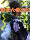 2009_08140003