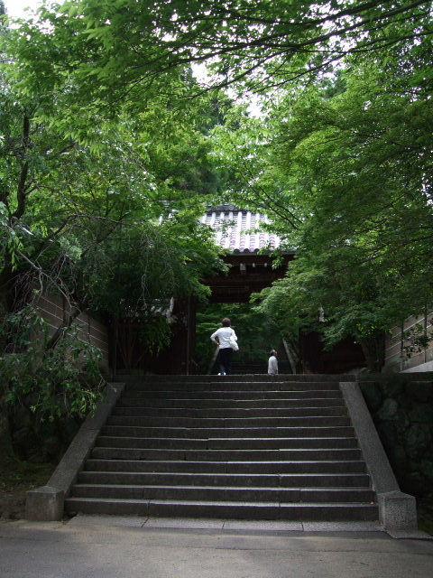 2009_06070014