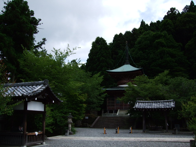 2009_06070021