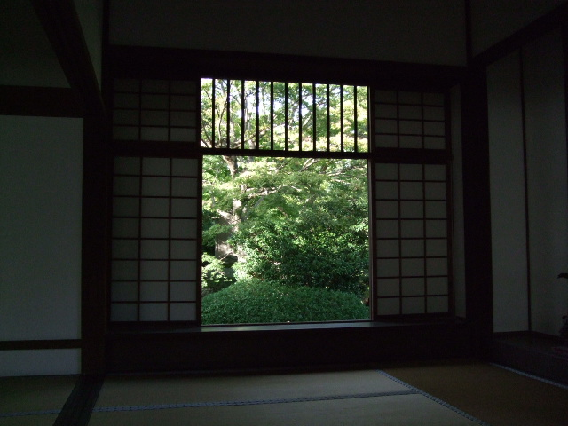 2009_10110053