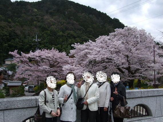 2010_04070005_2