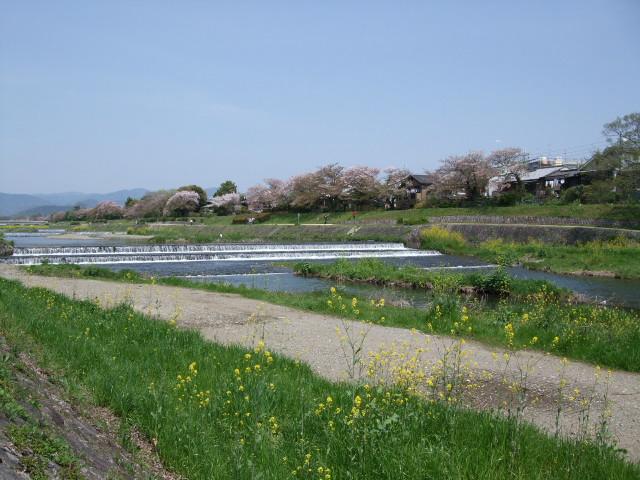 2010_04180050