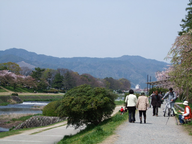 2010_04180062