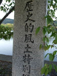 2010_04250009