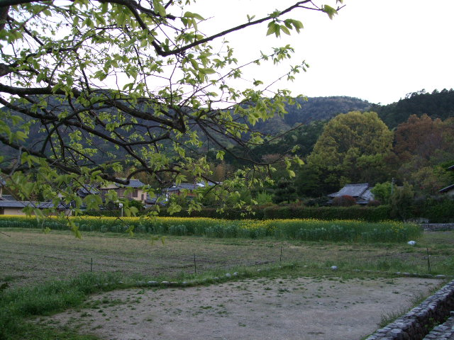 2010_04250026