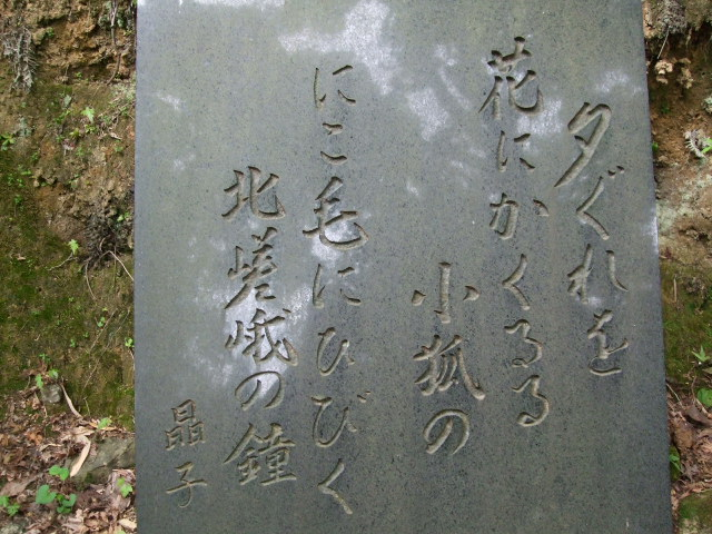 2010_05220047