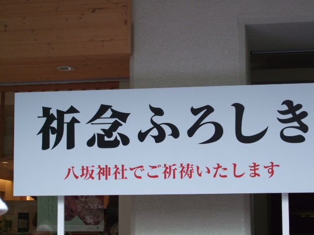 2010_07170068