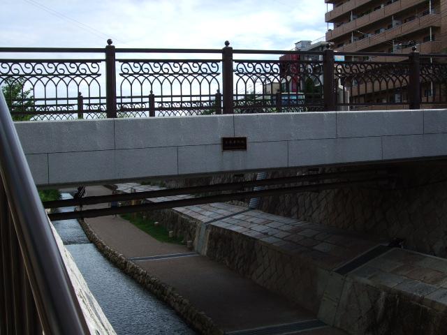 2010_08110023