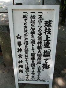 2010_09190008