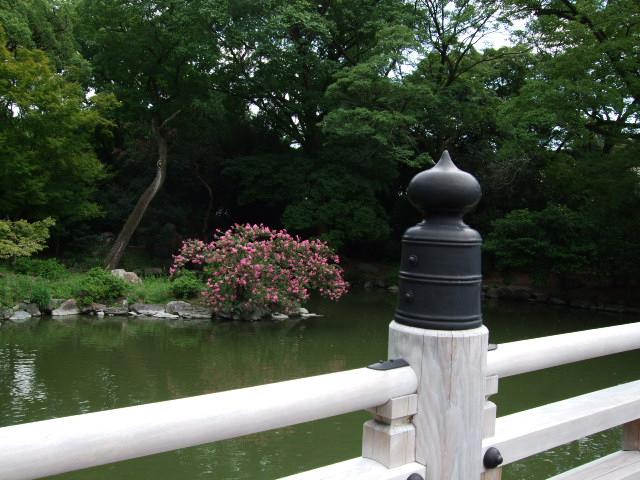 2010_09190043