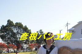 2010_11060006_2