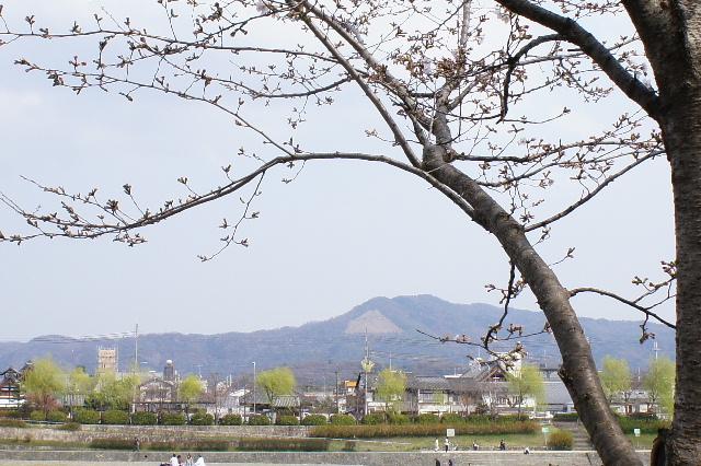 2011_04020098