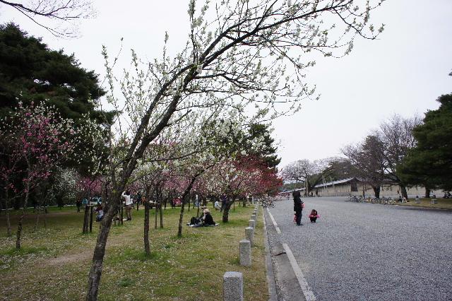 2011_04020054