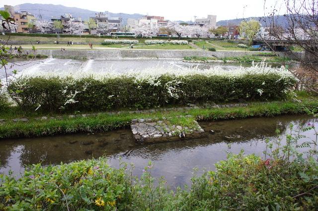 2011_04090066