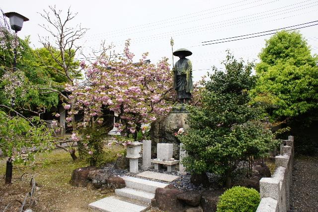 2011_04300052